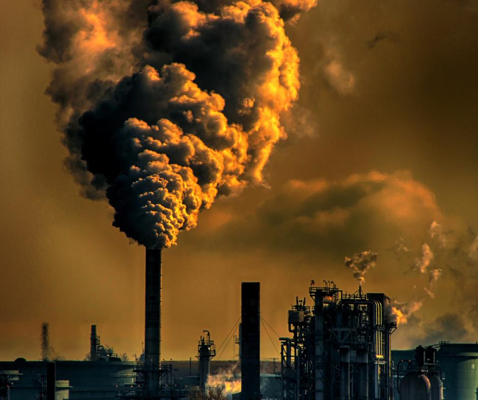 Dekarbonizacja z sensem